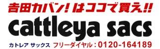 吉田カバンは(ポーター&ラゲッジレーベル)はカトレアサックスで!